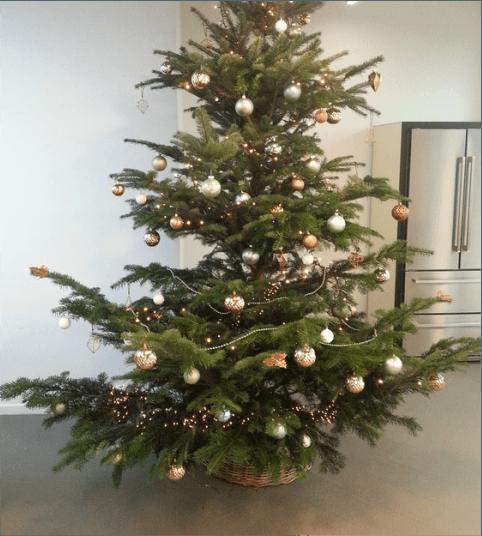 Kerstboom tot 150 cm