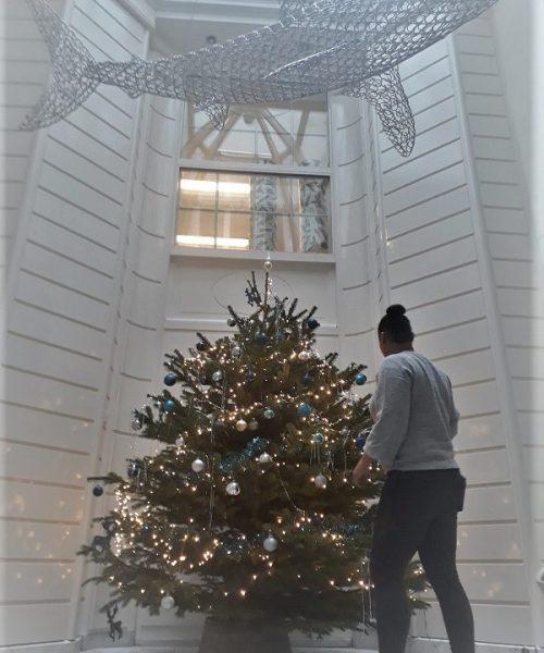 Kerstboomservice